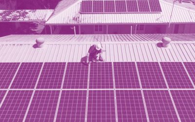 Solar Panels: The Top 3 Undefeated Brands